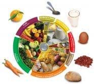 Roda dos alimentos percentagens